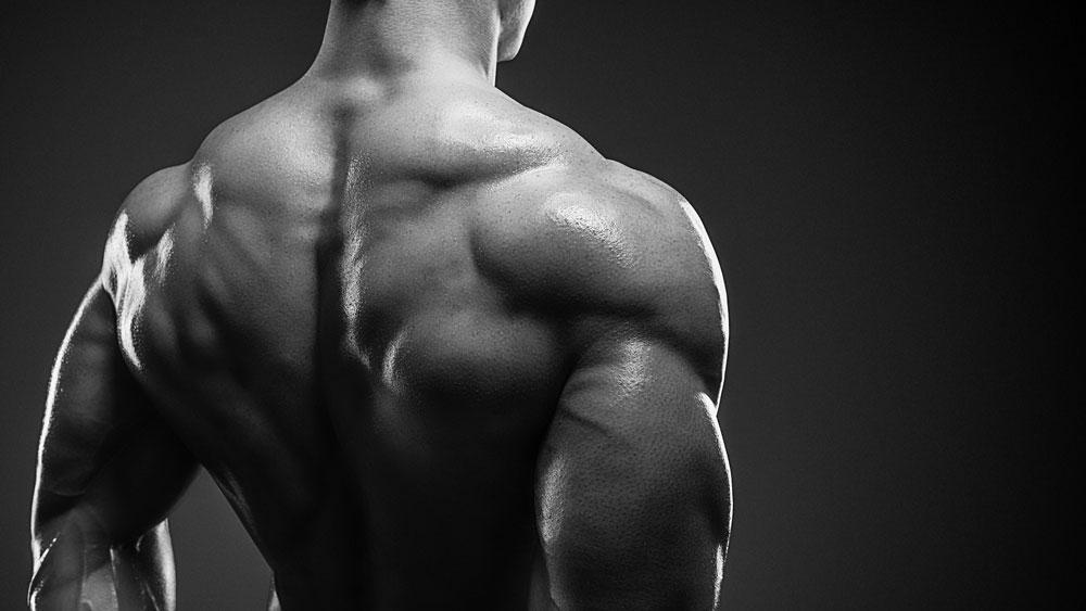 Les bienfaits d'un dos musclé pour vos vieux jours (et même avant) !
